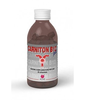CARNITON-B12 PET 80CPR 80G