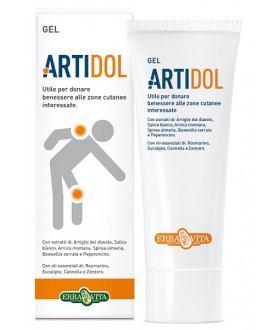 ARTIDOL GEL 100ML EBV